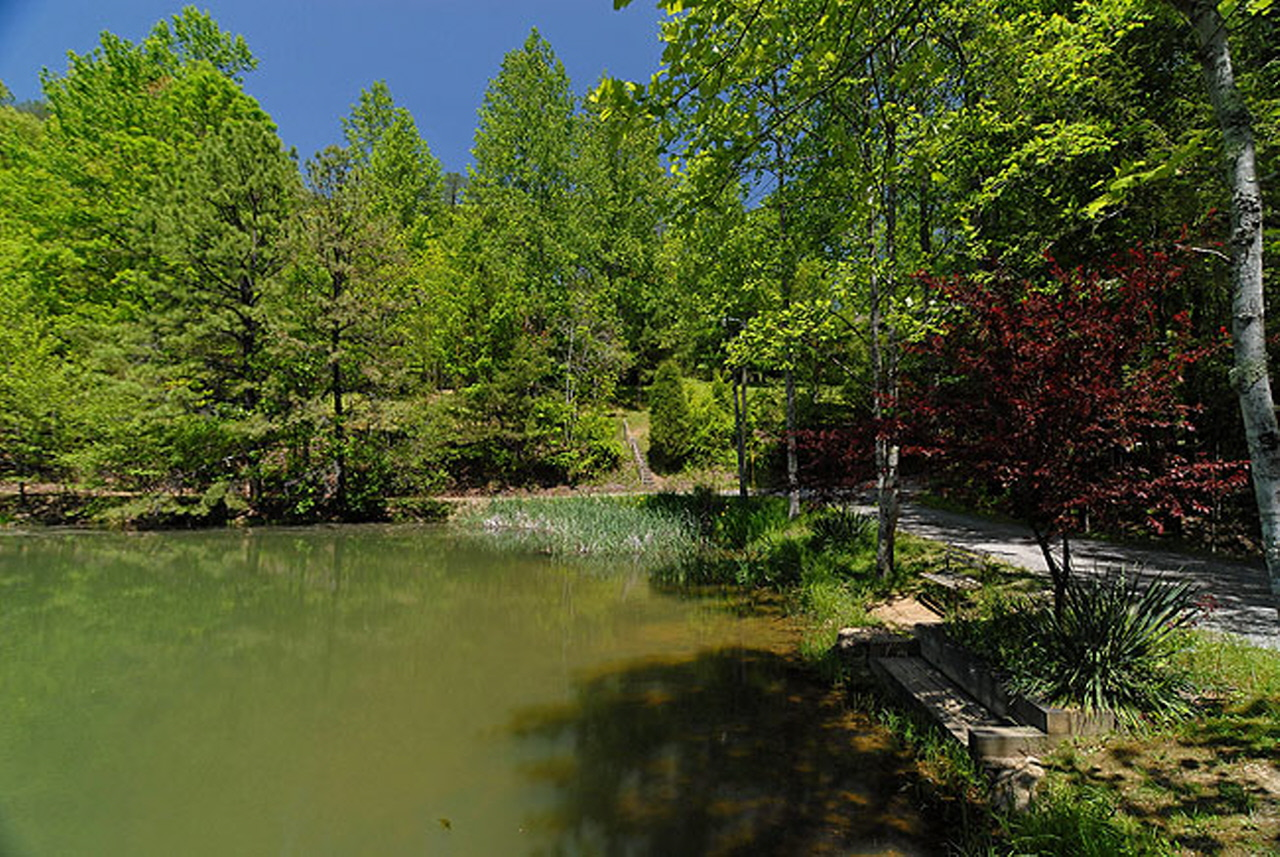 Cozy corner 1 bedroom cabin rental for Smoky mountain cabins with fishing ponds