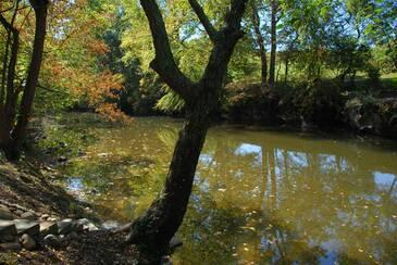 RiverDance_DSC_0066 (2)