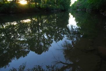 RiverDance_DSC_0093