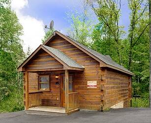 Beary Blue 1 Bedroom Cabin Rental